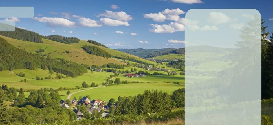 Summer in Bernau Bernau im Schwarzwald